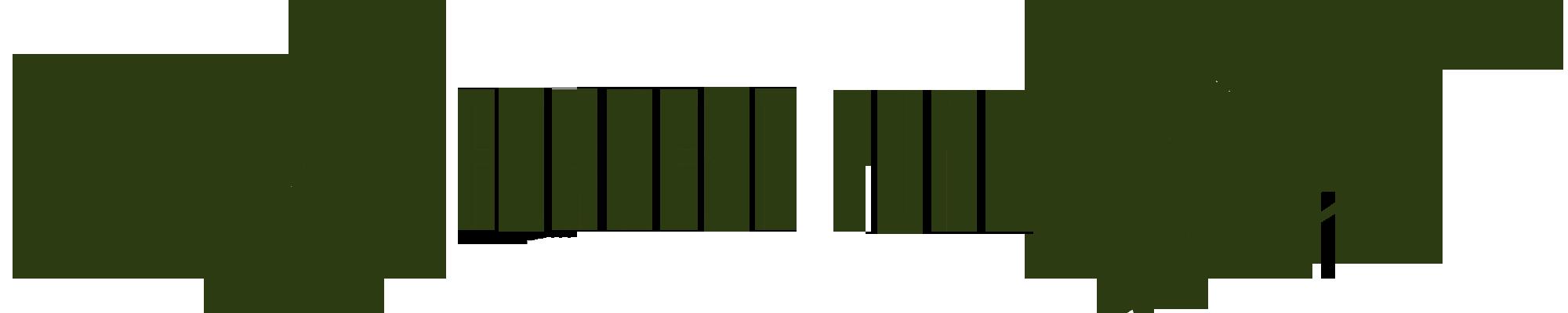 Forrest Funk - Das Kultfestival am Hochrhein